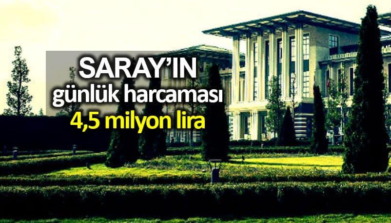 Cumhurbaşkanlığı Sarayı günlük harcaması 4,5 milyon lirayı aştı!