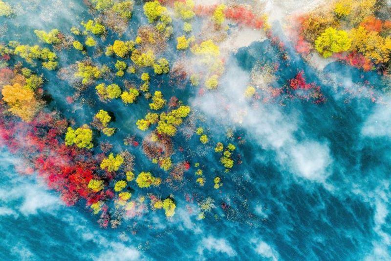 Fotoğrafçı Young-in Hong'un görüntüsü. dünya meteoroloji örgütü