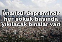 Prof. Şükrü Ersoy: Beklenen İstanbul depremi ulusal krize neden olabilir
