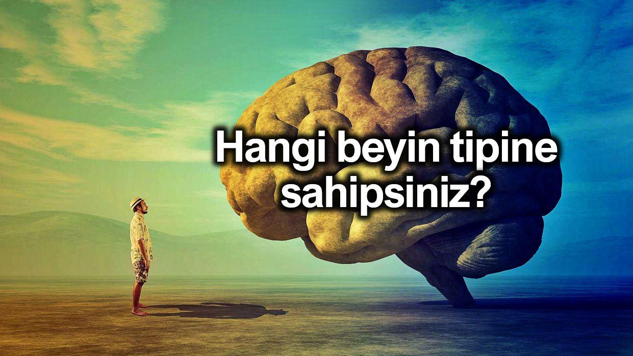 Hangi beyin tipine sahipsiniz? Beyniniz sizinle ilgili neler söylüyor?