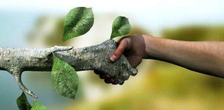 Kurtuluş doğadır!