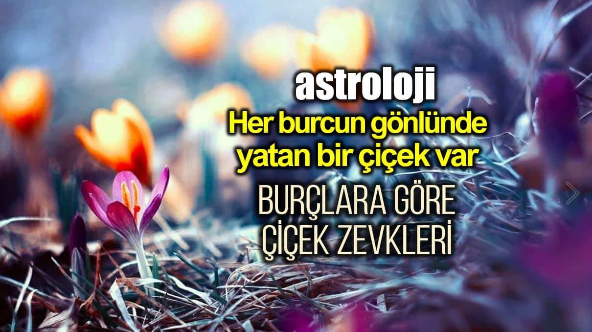 astroloji burçlara göre çiçek zevkleri en çok tercih edilen sevilen çiçekler