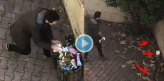 Kedilerin önünden mamalarını alıp çöpe attı
