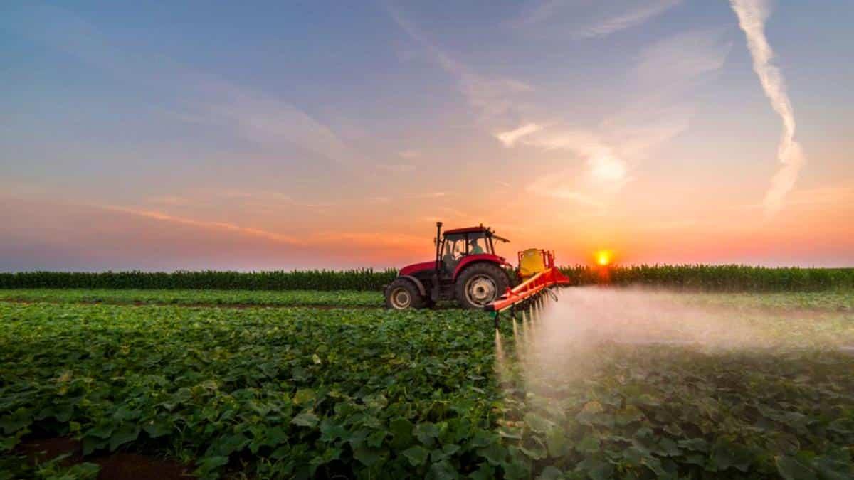 Türkiye de pestisit denetimleri yeterli değil!