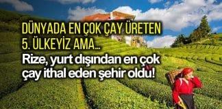 Rize yurt dışından en çok çay ithal eden şehir oldu!