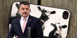 Tarım Bakanı Pakdemirli: Büyükbaş hayvanlar veterinere SMS atacak