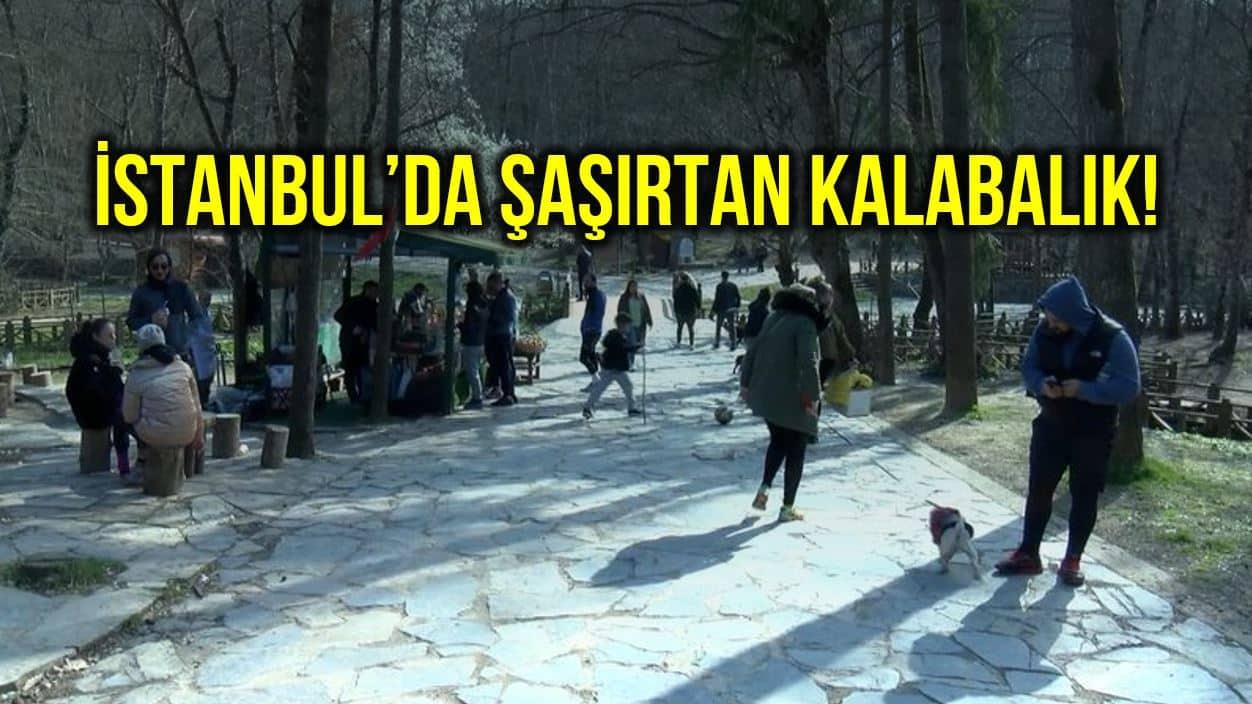 İstanbul evde kal uyarılarına kulak asmadı!