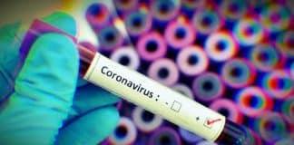 Çinli bilim insanları: Koronavirüs mutasyona uğradı, iki tip virüs oluştu
