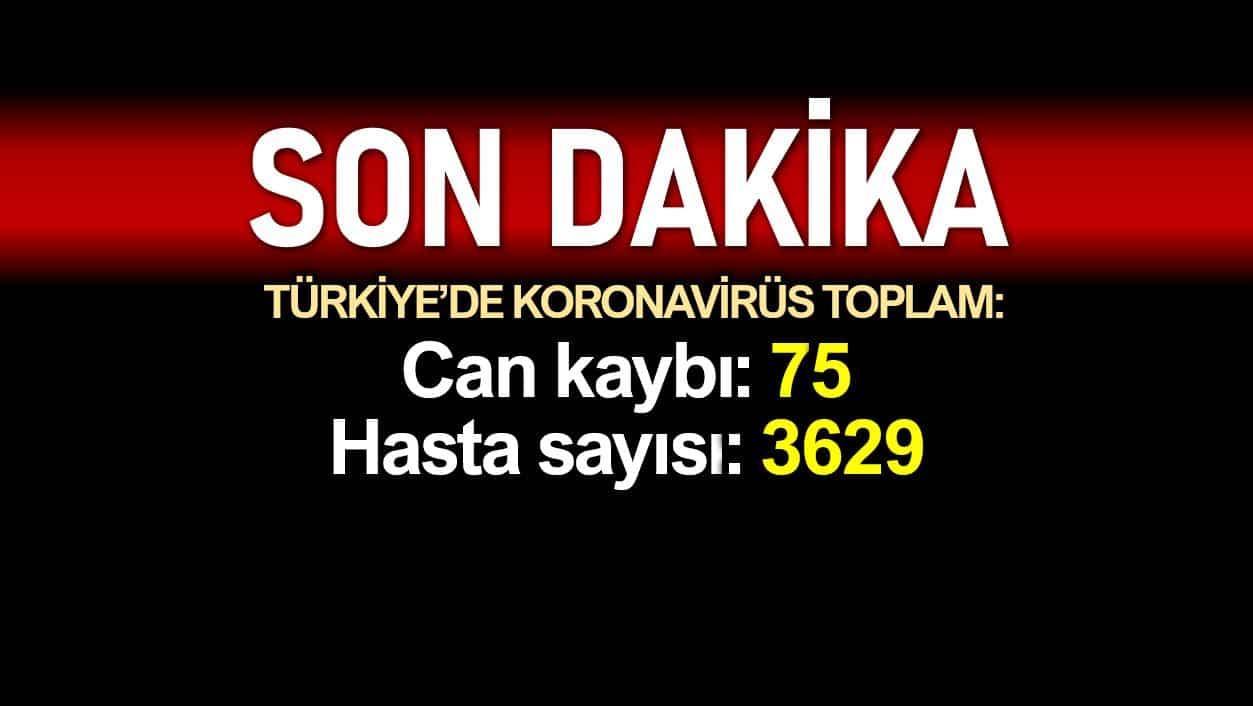 Türkiye de corona salgınında son durum: Toplam ölüm sayısı 75, hasta 3629