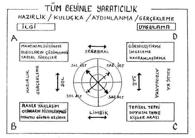 Ned Hermann'ın dört aşamalı yaratıcılık modeli