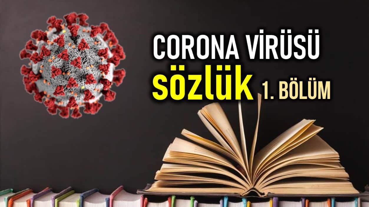 Corona virüsü sözlük: Nedir? Ne anlama gelir? (1. Bölüm)