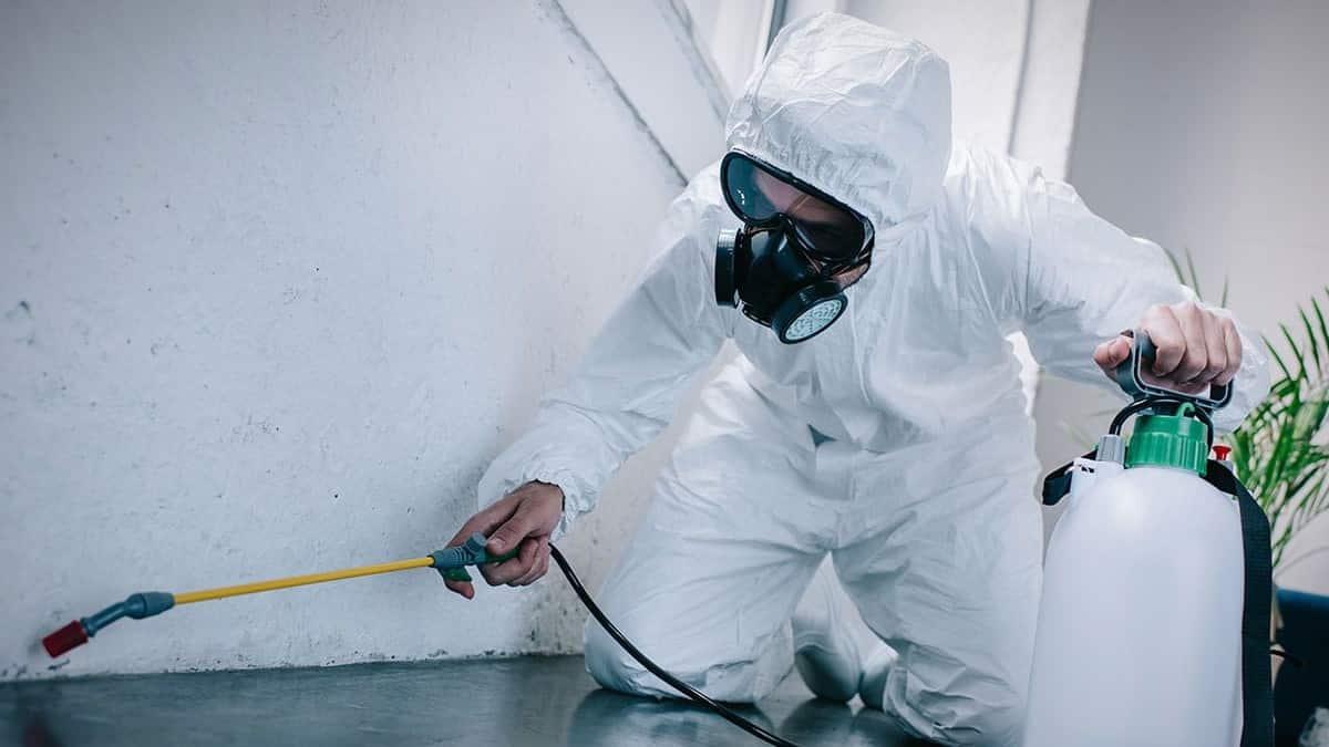 Gıdalarda pestisit artıkları ve ilaçlama konusunda dikkat edilmesi gerekenler