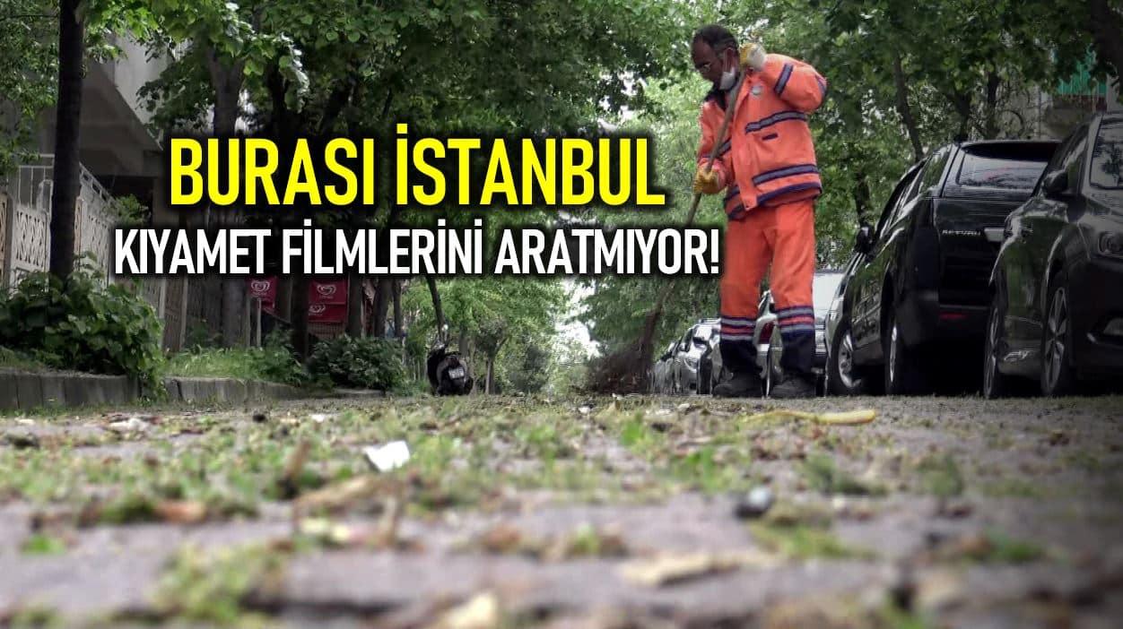 İstanbul da kıyamet filmlerini aratmayan görüntüler: Sokak ve kaldırım taşlarında otlar yeşermeye başladı!