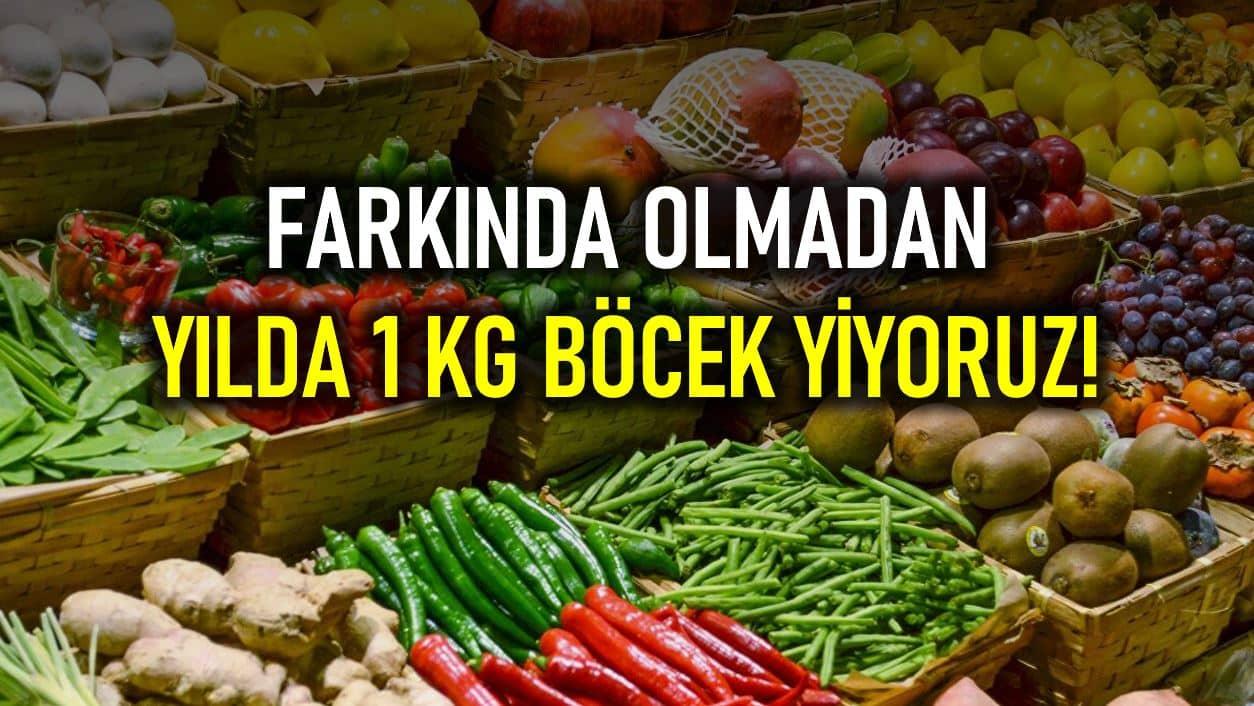 Farkında olmadan yılda 1 kilogram böcek yiyoruz!