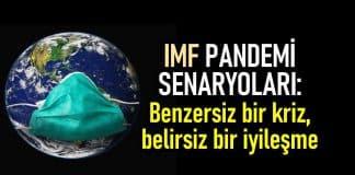 imf türkiye küçülme