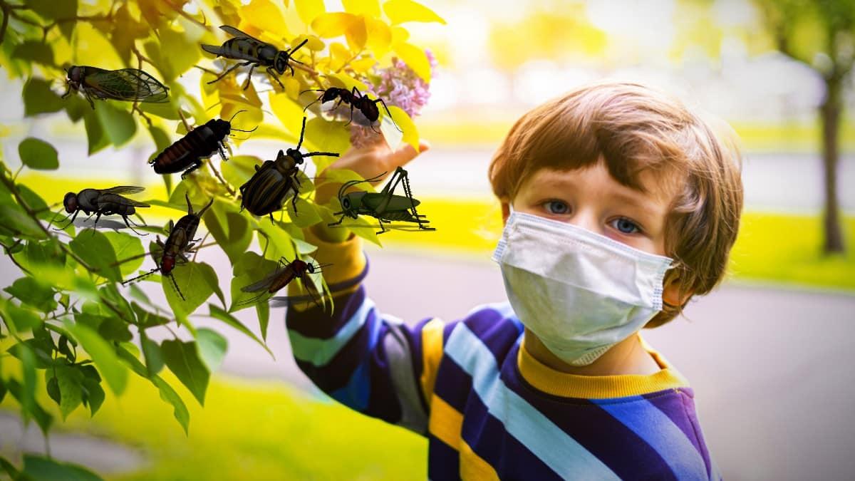 böcek alerjisi