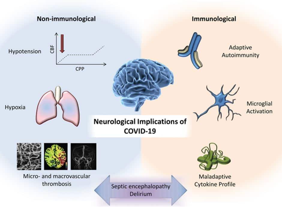 covid 19 nörolojik etkileri