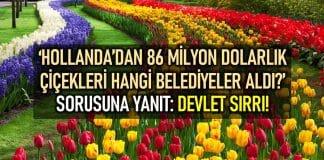 HOLLANDA 86 milyon dolar çiçek