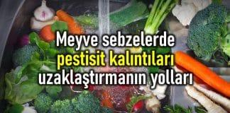 meyve sebze pestisit yıkama