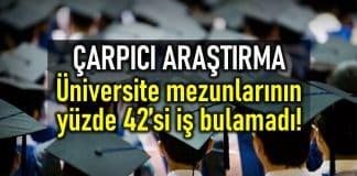 üniversite mezunları