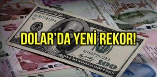 dolar tl