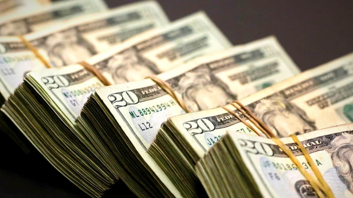 dolar tl euro