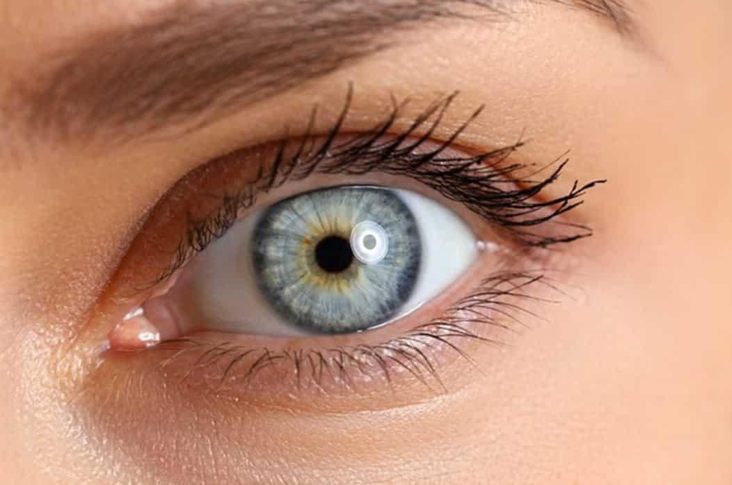 hareli lensler