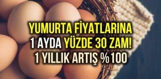 Yumurta fiyatlarındaki yükseliş