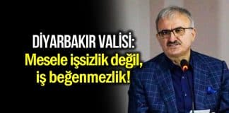 Diyarbakır Valisi Münir Karaloğlu: Mesele işsizlik değil, iş beğenmezliktir!