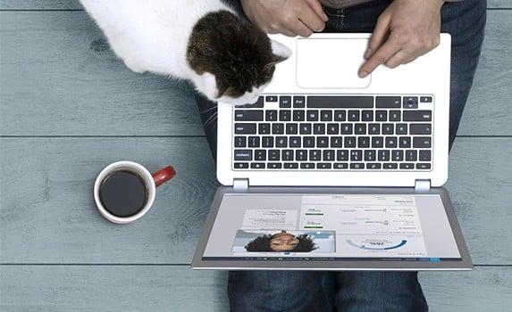 online iş