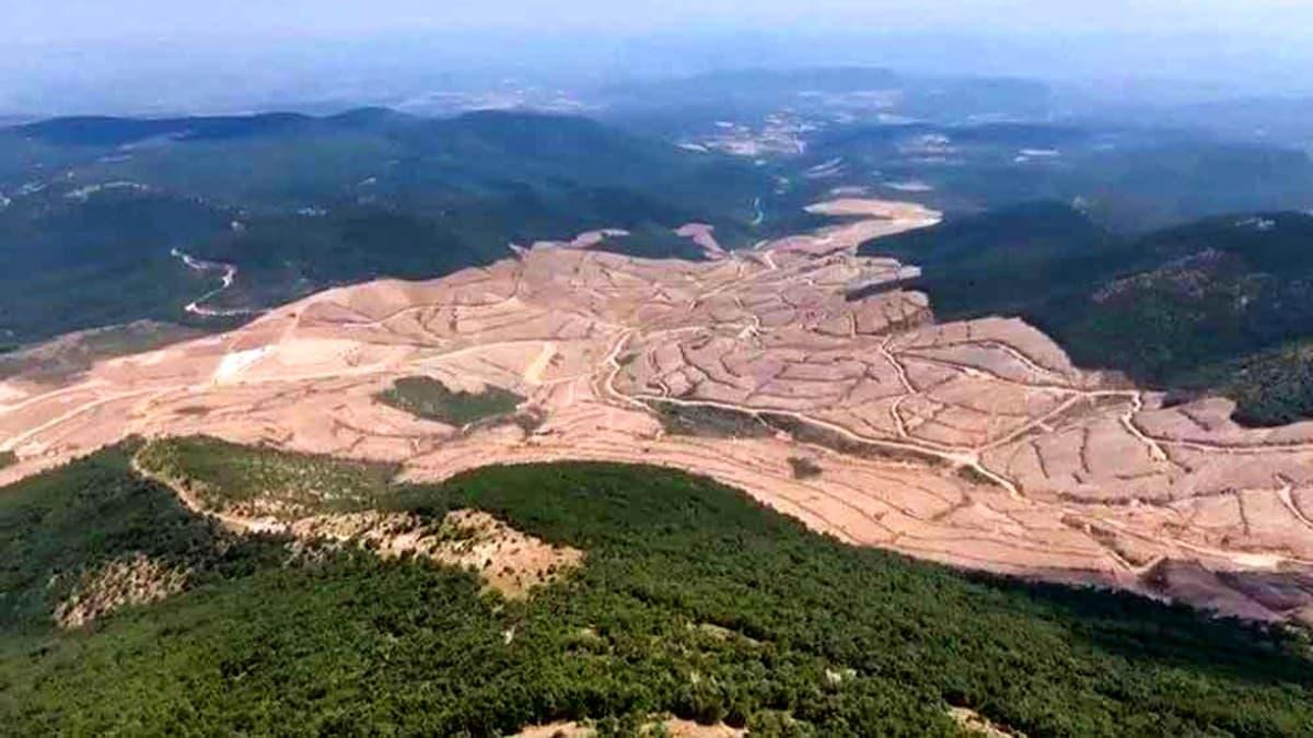 Cumhurbaşkanı istediği araziyi ormanlık alan statüsünden çıkarabilecek