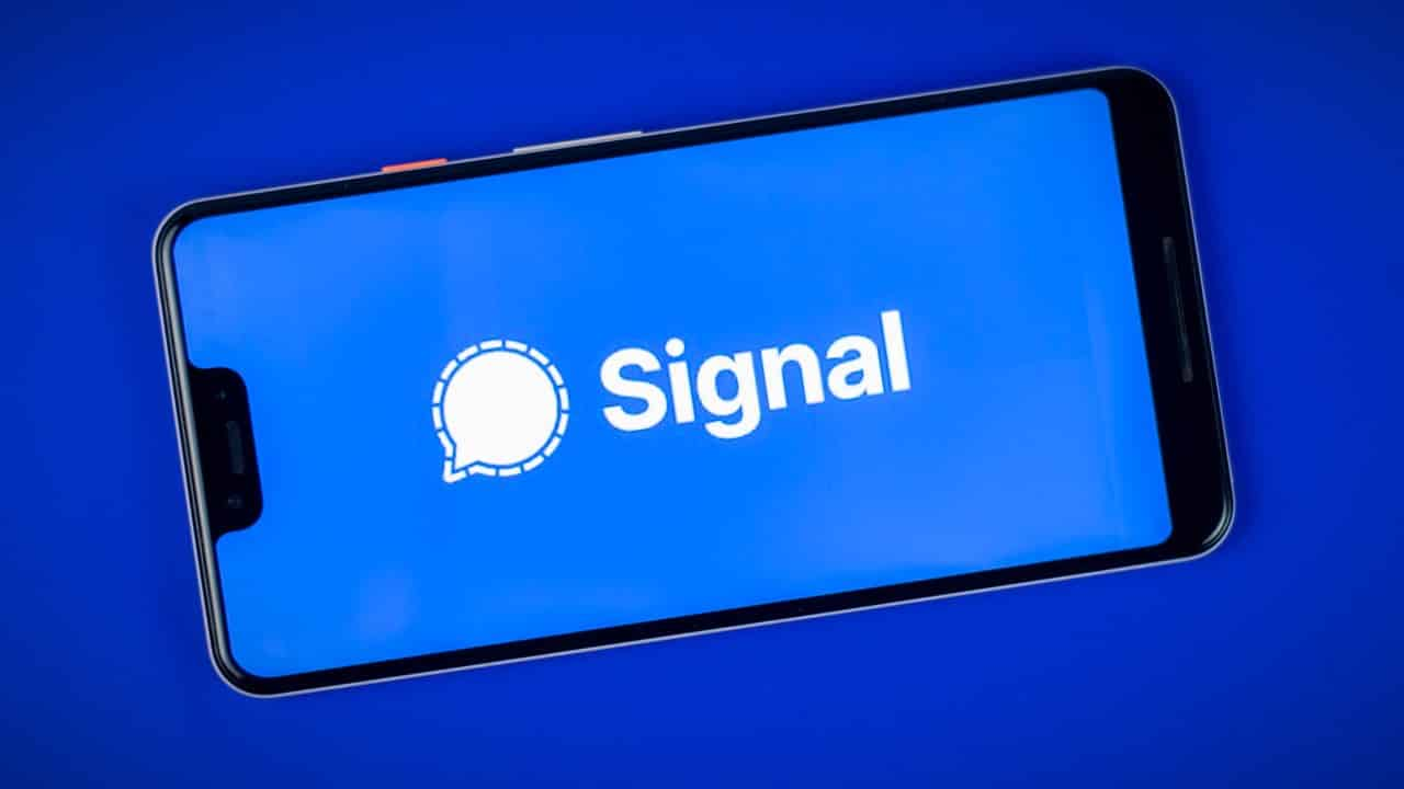 signal whatsapp elon musk