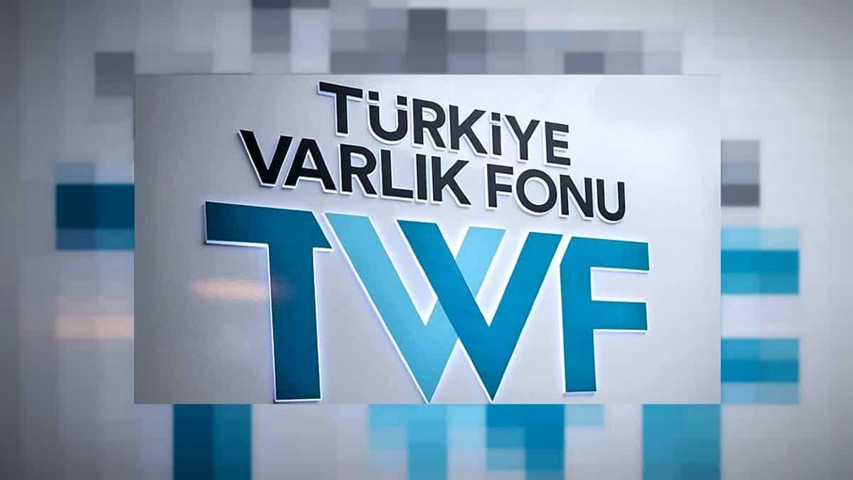 Türkiye Varlık Fonu'nu, İngiliz finans şirketi denetleyecek!
