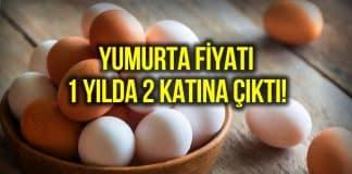 Yumurta fiyatı 2 katına çıktı: Bir aile ayda 150 TL sadece yumurtaya veriyor!