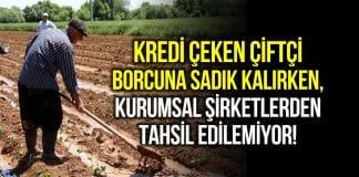 Kredi alan yurttaş ve çiftçi borcuna sadık kalırken, sermayeden tahsil etmek imkansız!