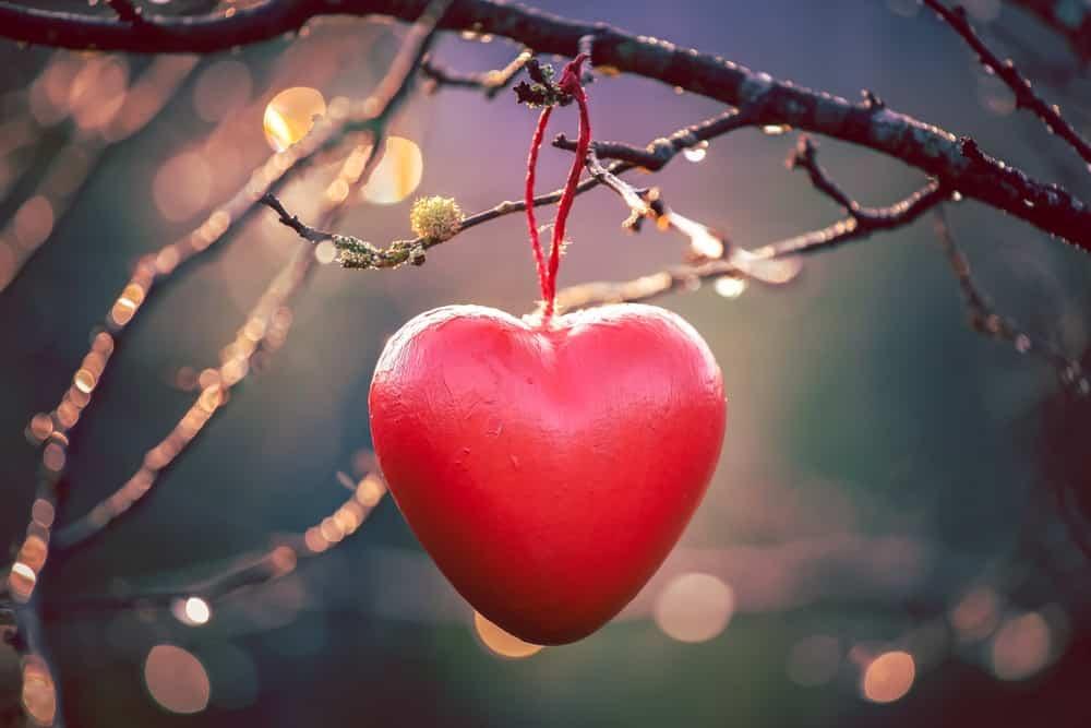 sevgililer günü aşk