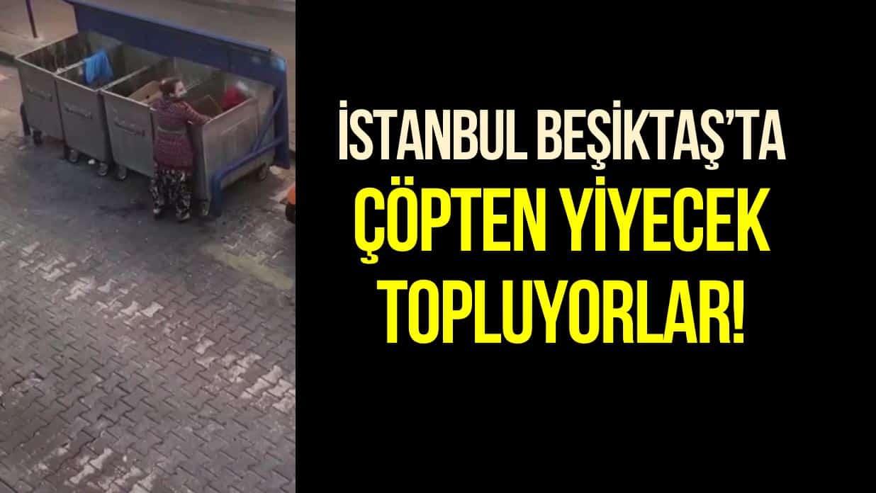 İstanbul Beşiktaş çöpten yiyecek