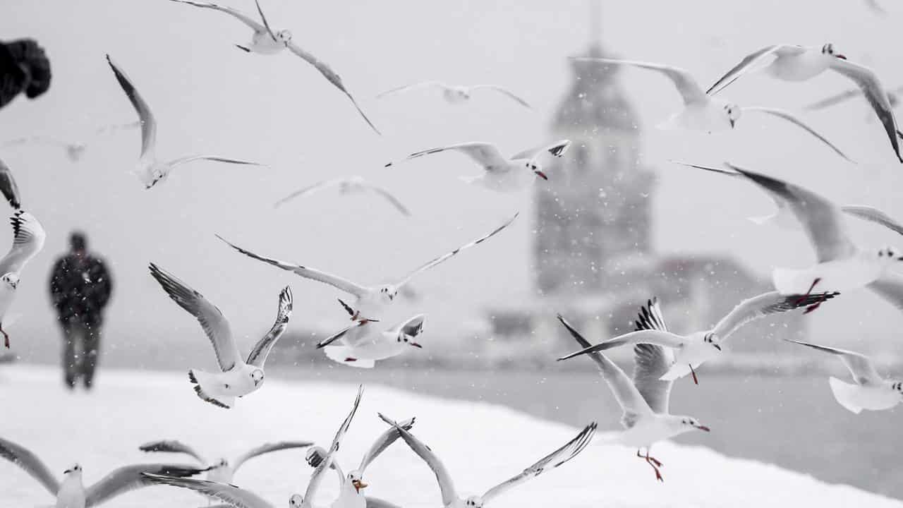 İstanbul kar ne zaman başlayacak?