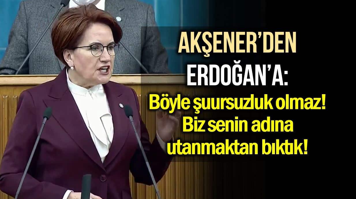 meral akşener erdoğan