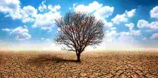 Küresel ısınma nasıl önlenir?