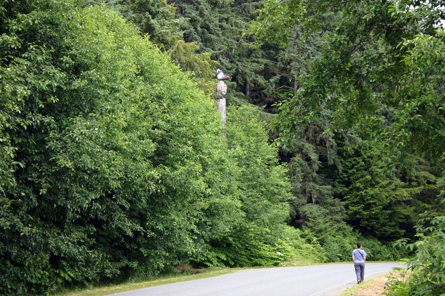 Alaska'da bir orman ve totem ağacı.