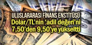 dolar tl adil