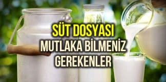 süt dosyası