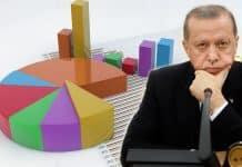 seçim anketi erdoğan