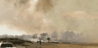 Manavgat yangın