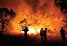 Rtük orman yangınları