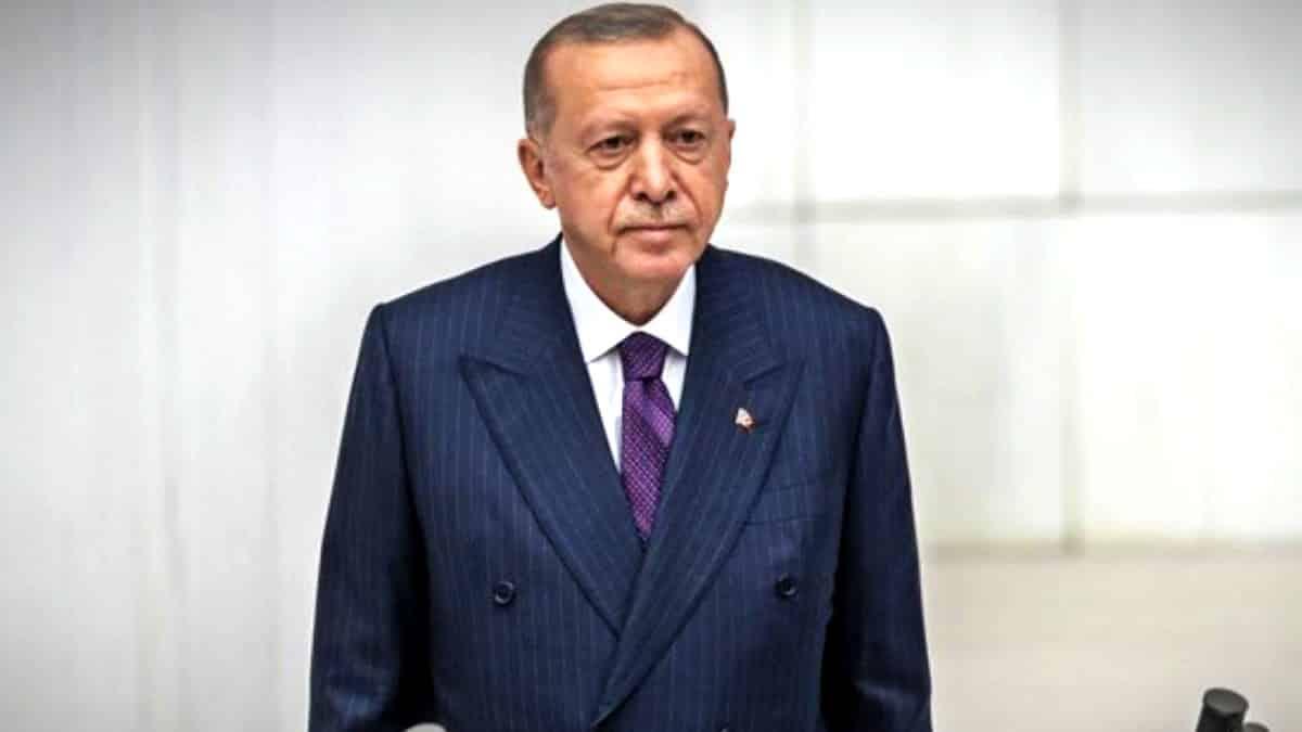 erdoğan ekonomi